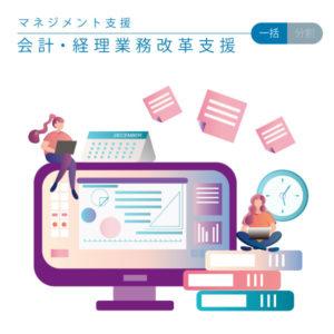【会計・経理業務改革支援(一括・分割)】